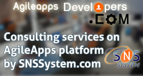 Consulting services on AgileApps platform by SNSSystem.com